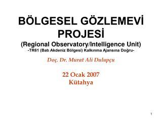Doç. Dr. Murat Ali Dulupçu 22 Ocak 2007 Kütahya