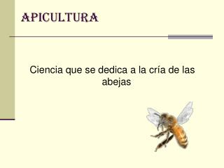 Ciencia que se dedica a la cría de las abejas