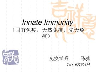 Innate Immunity (固有免疫,天然免疫,先天免疫)