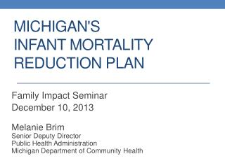 Michigan's  Infant Mortality  Reduction Plan