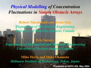 Physical Modelling  of Concentration Fluctuation s  in  Simple Obstacle Arrays
