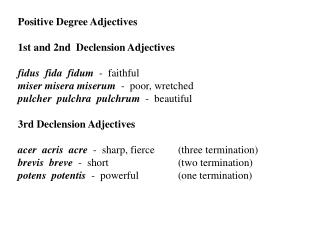 Positive Degree Adjectives 1st and 2nd  Declension Adjectives fidus  fida  fidum   -  faithful