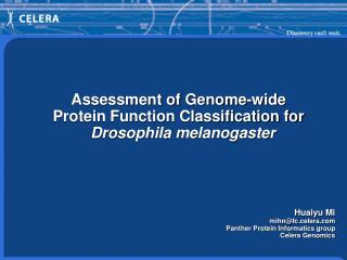 Assessment of Genome-wide  Protein Function Classification for  Drosophila melanogaster Huaiyu Mi