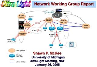 Network Working Group Report