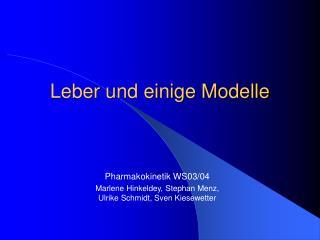 Leber und einige Modelle