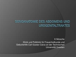 Sonoanatomie des Abdomens und Urogenitaltraktes