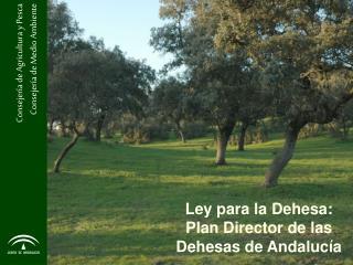 Ley para la Dehesa:  Plan Director de las                                     Dehesas de Andaluc a