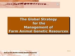 The Global Strategy  for the Management of  Farm Animal Genetic Resources