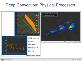 Deep Convection: Physical Processes