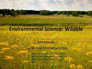 Environmental Science: Wildlife