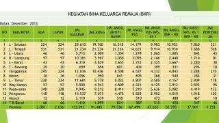 KEGIATAN BINA KELUARGA REMAJA (BKR) DESEMBER 2013