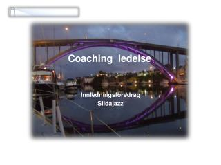 Coaching  ledelse