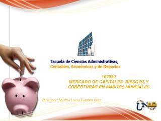 107030 MERCADO DE CAPITALES, RIESGOS Y  COBERTURAS EN  ÁMBITOS MUNDIALES