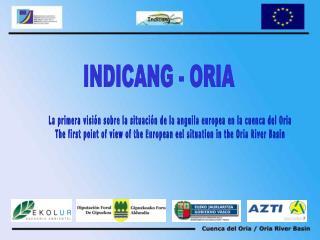 La primera visión sobre la situación de la anguila europea en la cuenca del Oria