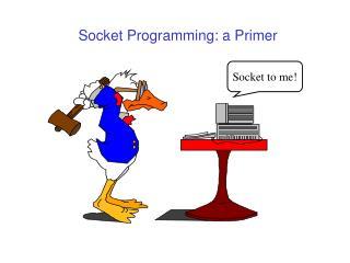 Socket Programming: a Primer