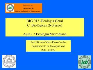 BIG 012 -Ecologia Geral C. Biológicas (Noturno) Aula - 7 Ecologia Microbiana