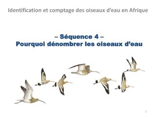 � S�quence 4 �  Pourquoi d�nombrer les oiseaux d�eau