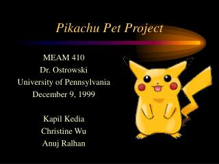 Pikachu Pet Project