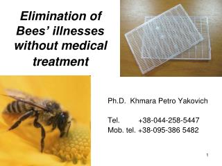 Elimination of  Bees' illnesses  without medical treatment