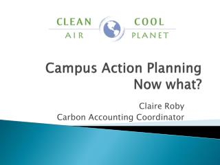 Campus  Action Planning Now what?