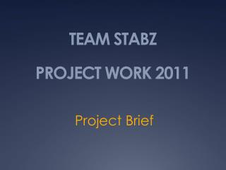 TEAM STABZ PROJECT WORK 2011