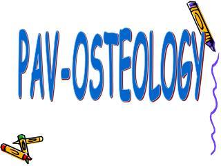 PAV-OSTEOLOGY