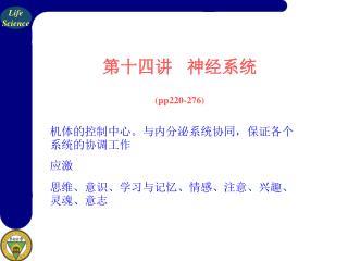 第十四讲    神经系统 (pp220-276)