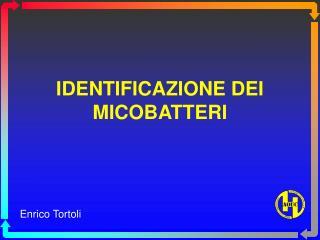 IDENTIFICAZIONE DEI MICOBATTERI