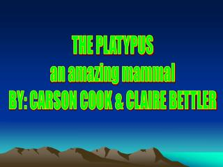 THE PLATYPUS an amazing mammal BY: CARSON COOK & CLAIRE BETTLER