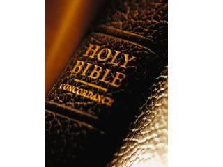 Bible Blitz