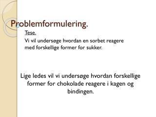 Problemformulering.