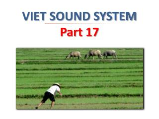 VIET SOUND SYSTEM  Part 17