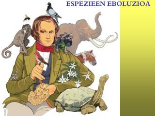 ESPEZIEEN EBOLUZIOA
