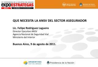 QUE NECESITA LA ANSV DEL SECTOR ASEGURADOR Lic. Felipe Rodríguez Laguens Director Ejecutivo ANSV