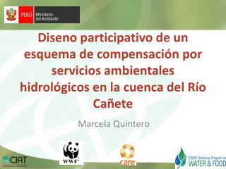 Marcela Quintero