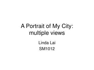 A Portrait of My City: multiple views