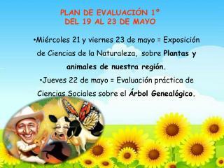 PLAN DE EVALUACI�N 1�  DEL  19 AL  23  DE  MAYO
