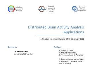 Distributed Brain Activity Analysis Applications