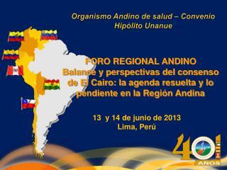 13  y 14 de junio de 2013 Lima, Perú