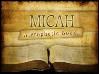 PROPHET OVERBOARD