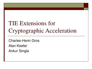 TIE Extensions for Cryptographic Acceleration