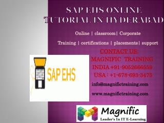 Sap ehs online tutorial in hyderabad
