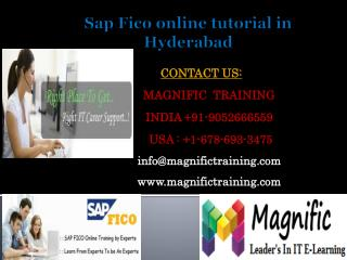 Sap Fico online tutorial in Hyderabad