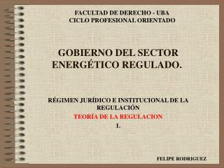 GOBIERNO DEL SECTOR ENERGÉTICO REGULADO.