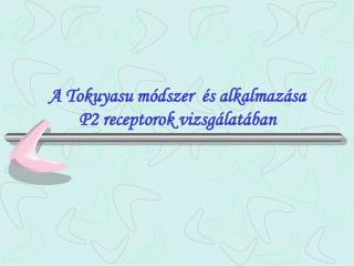 A Tokuyasu módszer  és alkalmazása  P2 receptorok vizsgálatában