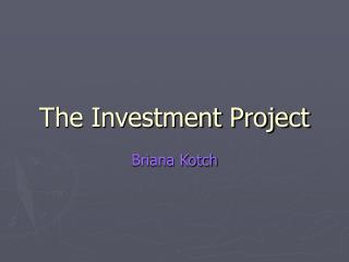 The Investment Project