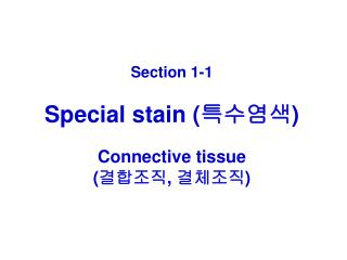 Section 1-1 Special stain ( 특수염색 ) Connective tissue ( 결합조직 ,  결체조직 )