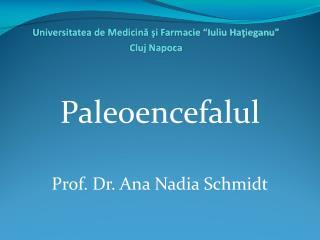 Paleoencefalul Prof. Dr. Ana Nadia Schmidt