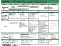 PSYOP NCO CMF 37 Professional Development Model