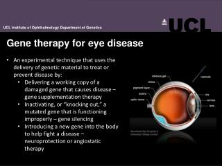 Gene therapy for eye disease
